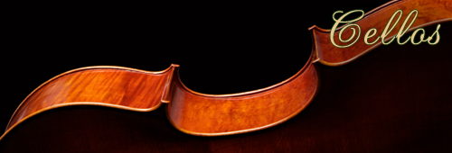 Cellos for sale at Sapp Violin Shop