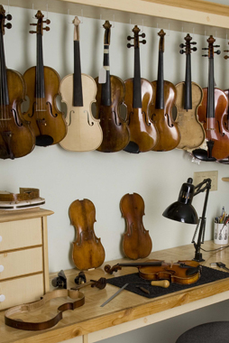Violins waiting to be repaired and adjusted in Greg Sapp's workshop