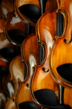 Several violins hanging on a wall